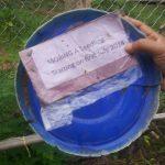 Die ersten Töpfe werden mit Moringa Samen bestückt.